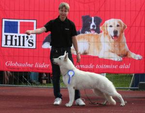 DogNews Year 2010 9