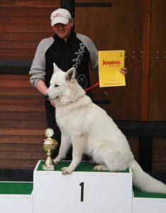 Koerauudised aastal 2007 25