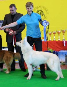 DogNews Year 2010 12