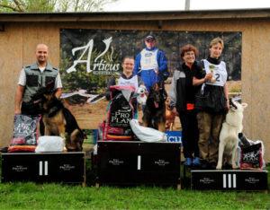 Koerauudised aastal 2010 36
