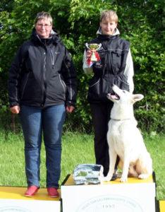 DogNews Year 2010 8