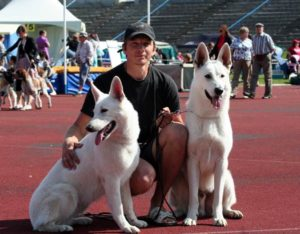 Koerauudised aastal 2011 21