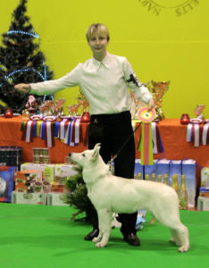 DogNews Year 2009 23