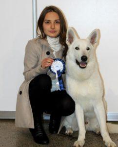 DogNews Year 2012 2