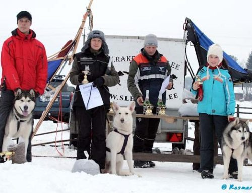 SledDogs Federation Winter Cup 2009
