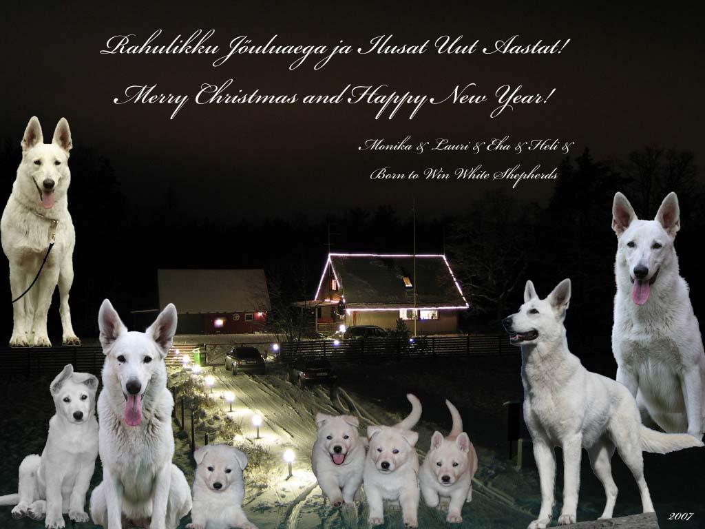 Häid Jõule ja Head Uut Aastat 2007-2008! 3