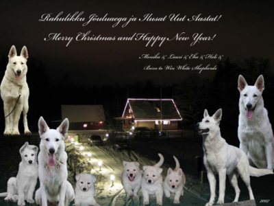 Merry Christmas and Happy New Year 2007-2008! 13