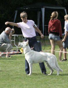 25.08.07 Väimela Dog Show 1