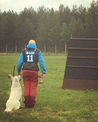 Born to Win Warrior Shooter 1 place with 95 points from a tracking competition in Estonia 10