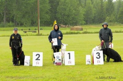 Born to Win Warrior Shooter 1 place with 95 points from a tracking competition in Estonia 12