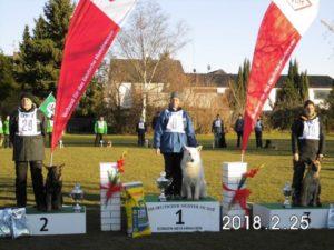 VDH FH Championship 2018 in Germany won White Shepherd Chuck vom Reinholdsberg handler Grit Oberländer 94/97 1