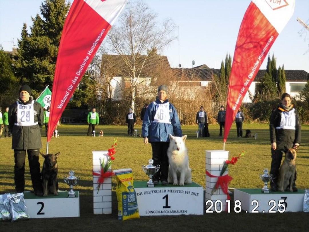 VDH FH Championship 2018 in Germany won White Shepherd Chuck vom Reinholdsberg handler Grit Oberländer 94/97 52