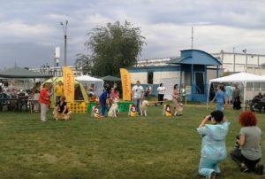 Born to Win Warrior Titan Best in Group 2 place in FCI-CAC & FCI-CACIB Dog Show in Ukraine 1