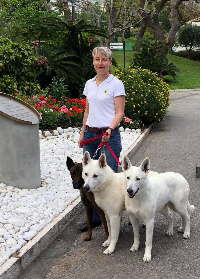 Monaco Dog Show all White Swiss Shepherds and Malinois dogs excellent character! 3
