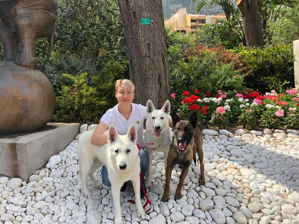 Monaco Dog Show all White Swiss Shepherds and Malinois dogs excellent character! 4