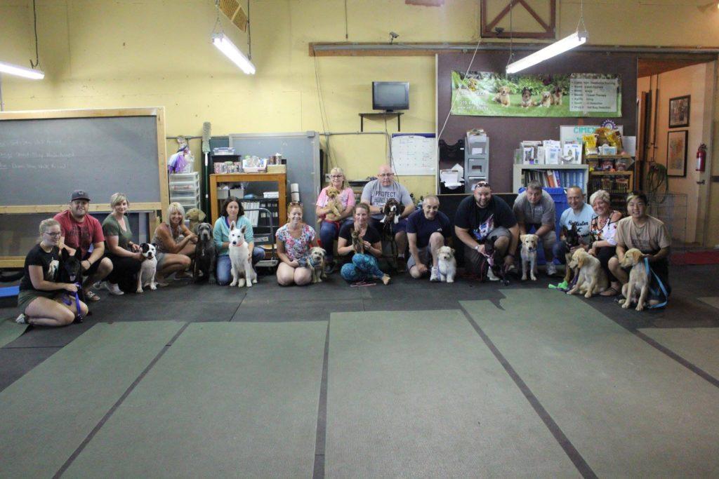 BTWW Bentley in Canada puppy class graduation! 1