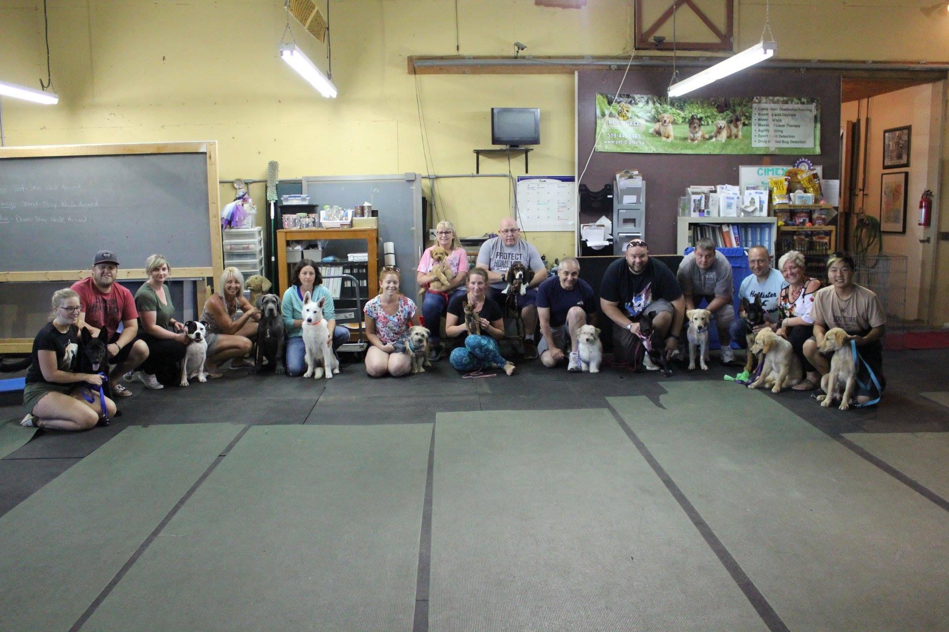 BTWW Bentley in Canada puppy class graduation! 29