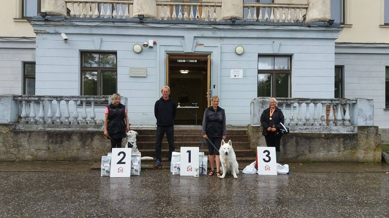 BTWW Dogs Successful in Tracking Competition 1