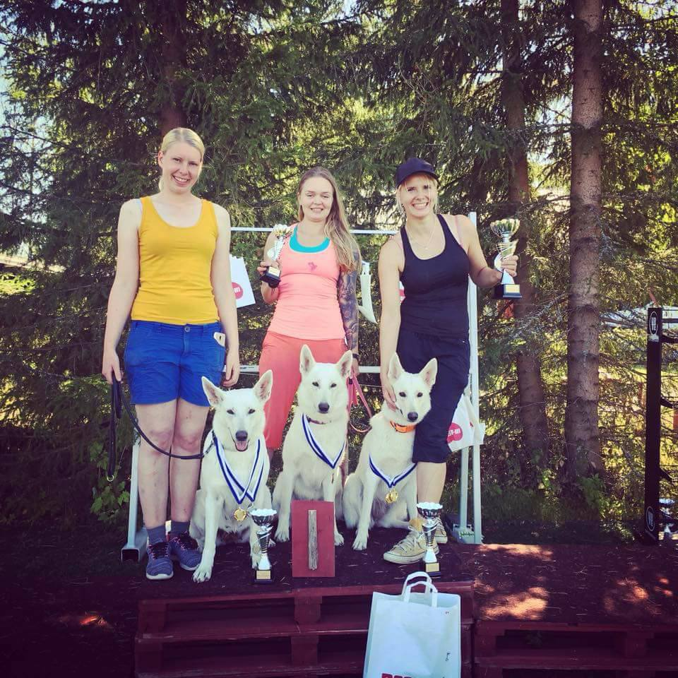 White Shepherd Breed obedience and rally obedience competition in Finland!  3
