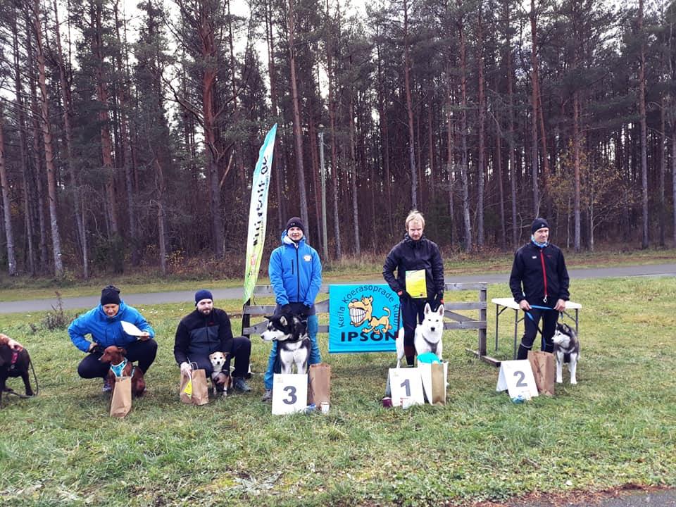 BTWW Tyson 1st place in canicross in Estonia 1