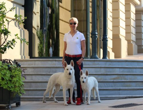 Honour Member Nomination in Estonian White Shepherd Association