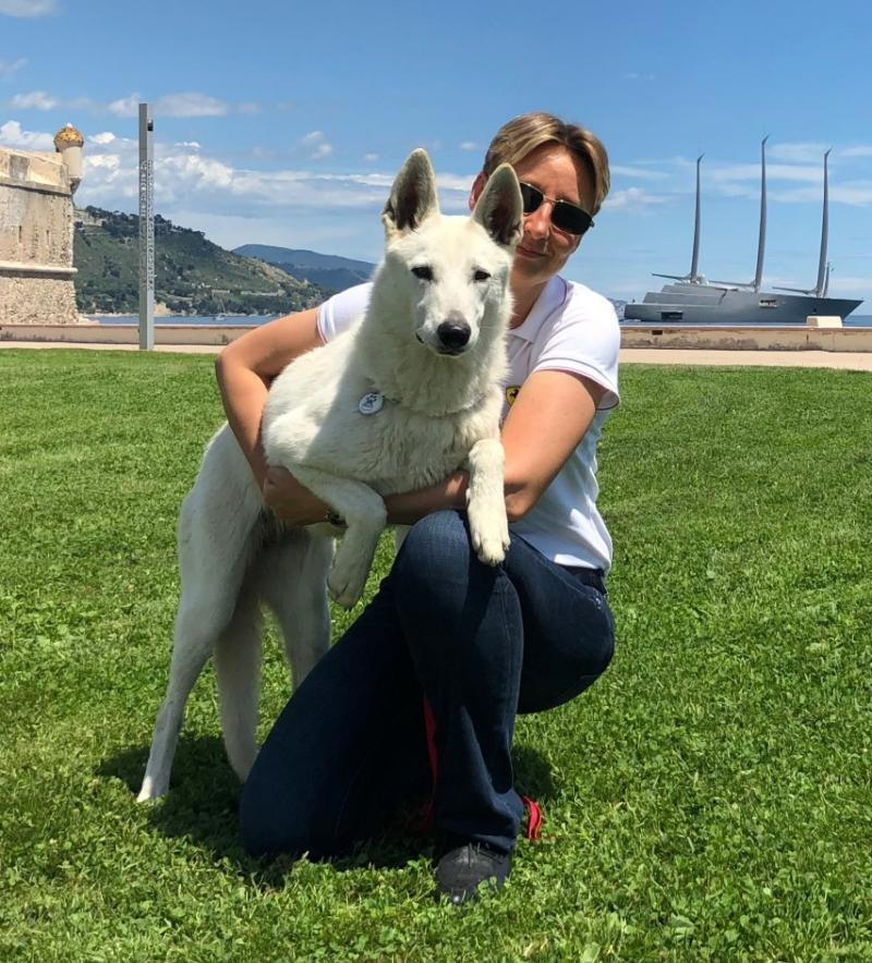 White Shepherd Puppies Monaco France Cote d'Azur Cannes Nice Italy Imperia 1