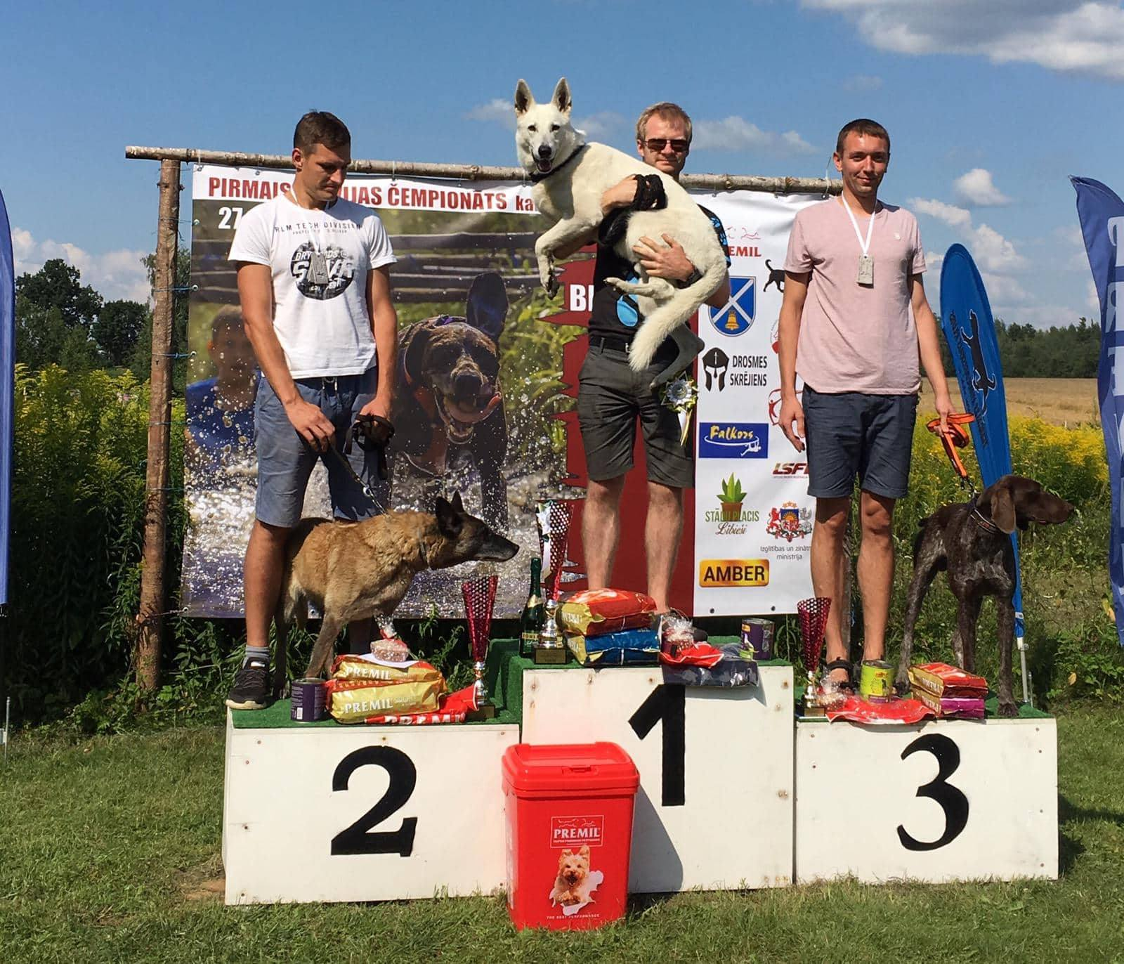 Born to Win Warrior Tyson 1 place in Latvian Championship of Canicross Obstacle Course Individual and 2 place with Team Baltosport! 1