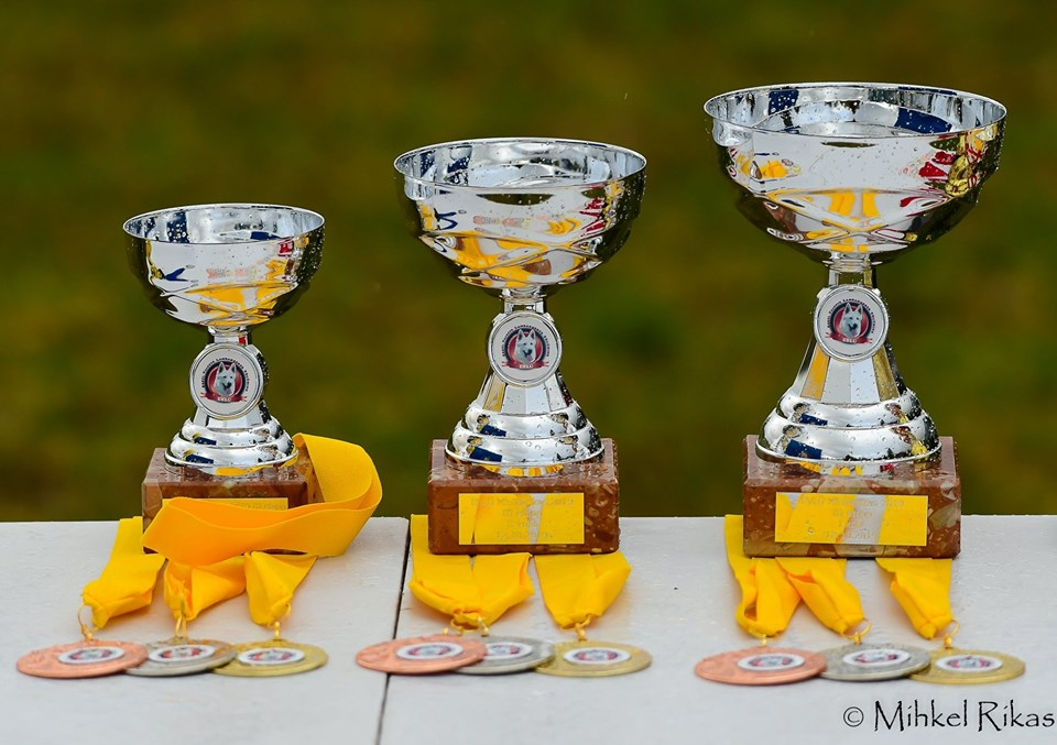 BTWW in EVLÜ Mini Cup 2019 obedience competition 7