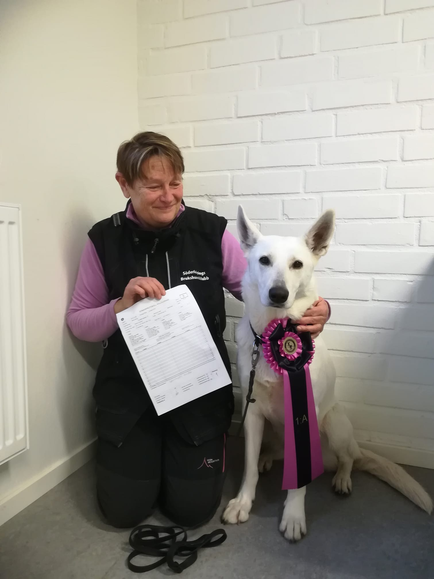 Born to Win Warrior Yara Won Rallye Obedience in Sweden 2