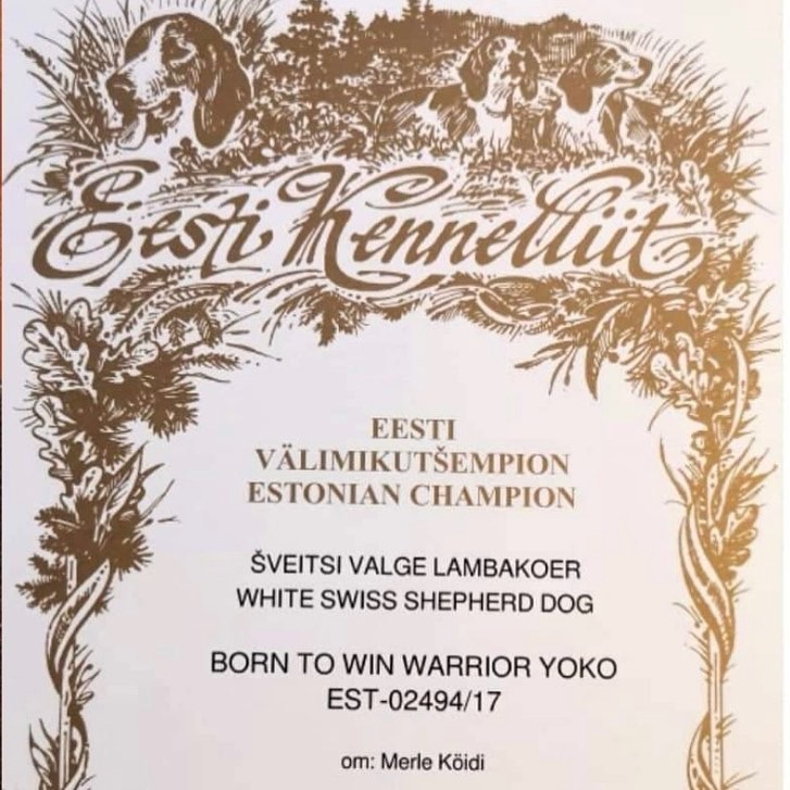 Estonian Champion Certificate