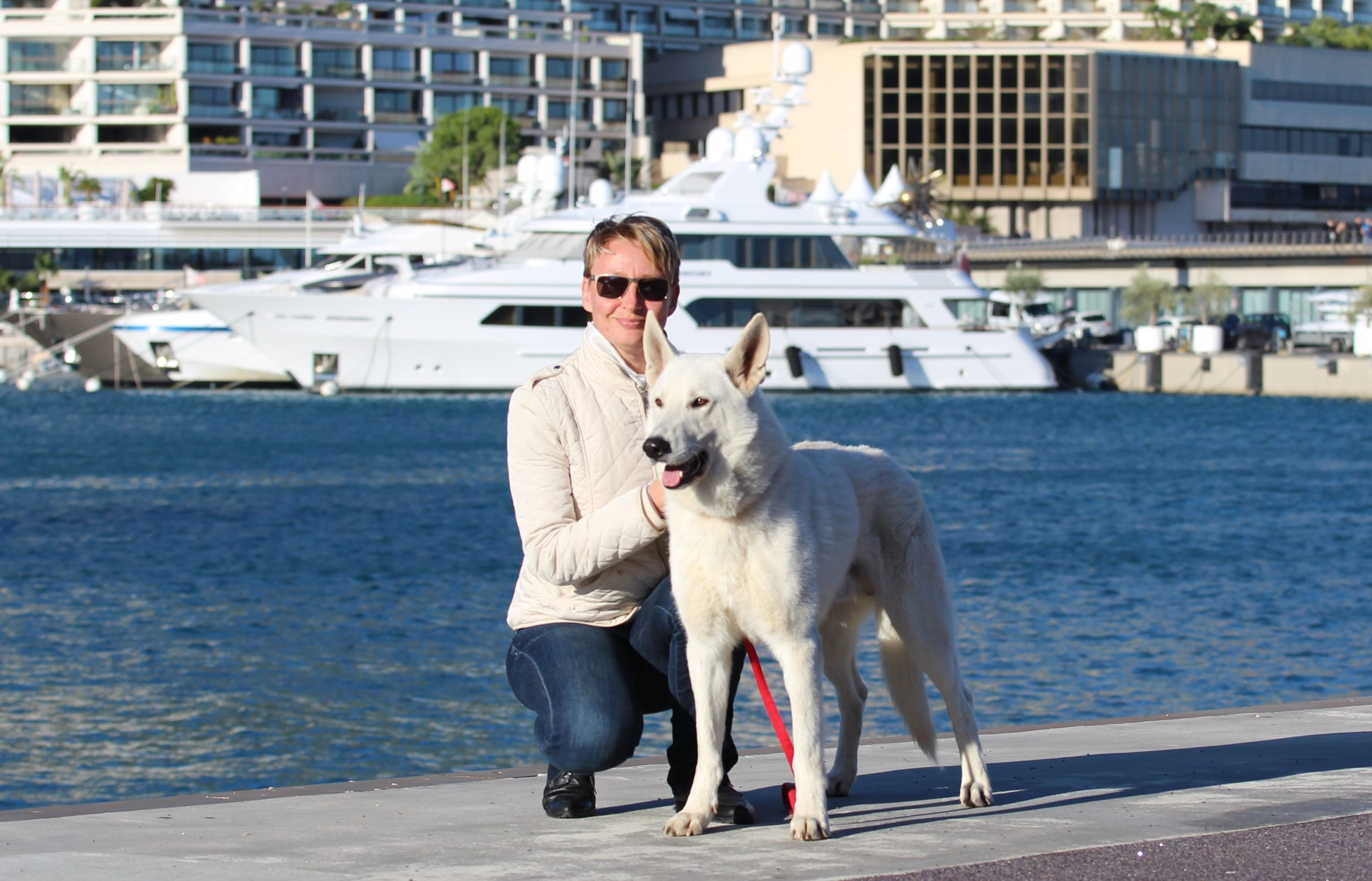 Belgian Malinois and White Shepherd Dogs BTWW Born to Win Warriors Active Dogs Active People