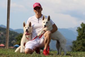 White-Swiss-Shepherd-Breeding-Male-BTWW-Wahlman-August-2018-0264