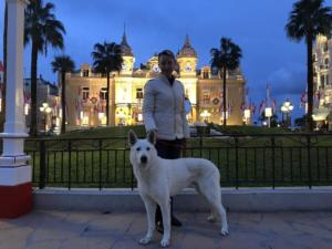 White-Swiss-Shepherd-Male-Born-to-Win-White-Escobar-16