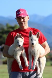 White-Swiss-Shepherd-Puppies-BTWW-F-August-2018-0044
