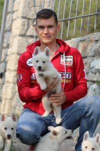 White-Swiss-Shepherd-Puppies-BTWW-GosaNostra-September-20092018-0067