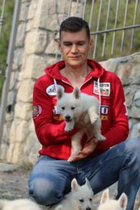 White-Swiss-Shepherd-Puppies-BTWW-GosaNostra-September-20092018-0069