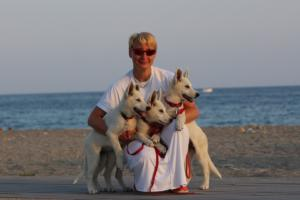 White-Swiss-Shepherd-Puppies-BTWW-N-Litter-05062019-0035