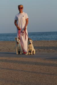 White-Swiss-Shepherd-Puppies-BTWW-N-Litter-05062019-0048