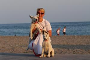 White-Swiss-Shepherd-Puppies-BTWW-N-Litter-05062019-0055