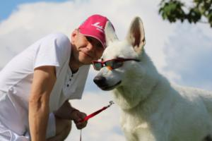 White-Swiss-Shepherd-Breeding-Male-BTWW-Wahlman-August-2018-0036