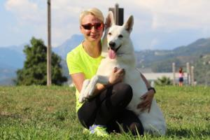White-Swiss-Shepherd-Breeding-Male-BTWW-Wahlman-August-2018-0044